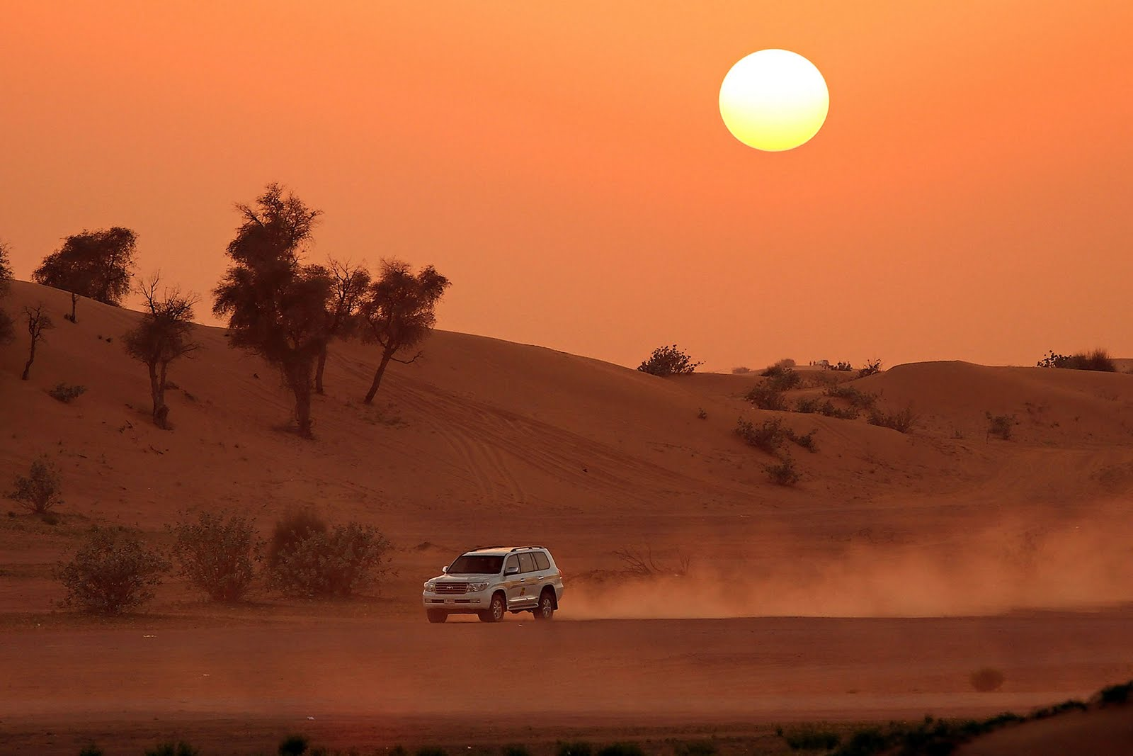 Image result for early morning desert safari Dubai